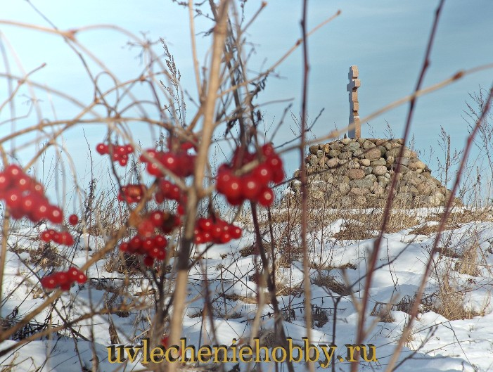 uvlecheniehobby.ru.природа30