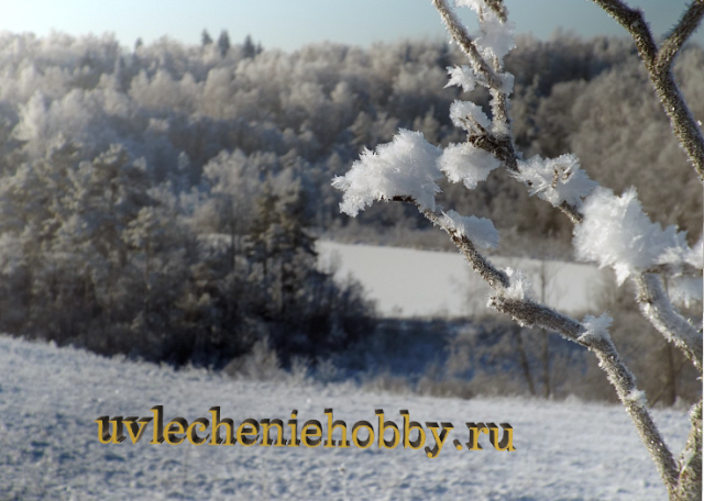 uvlecheniehobby.ru.природа1.JPG