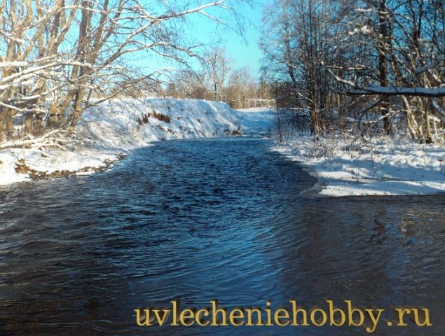 uvlecheniehobby.ru.природа11