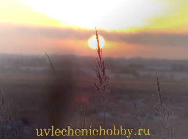 uvlecheniehobby.ru.природа21