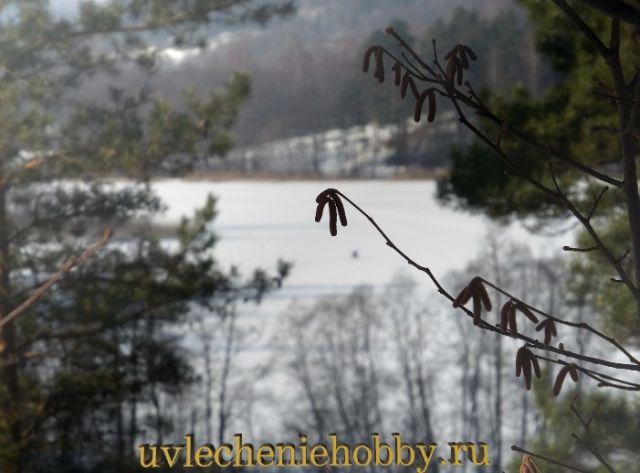 uvlecheniehobby.ru.природа26