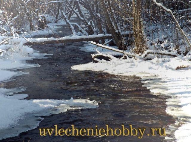 uvlecheniehobby.ru.природа8