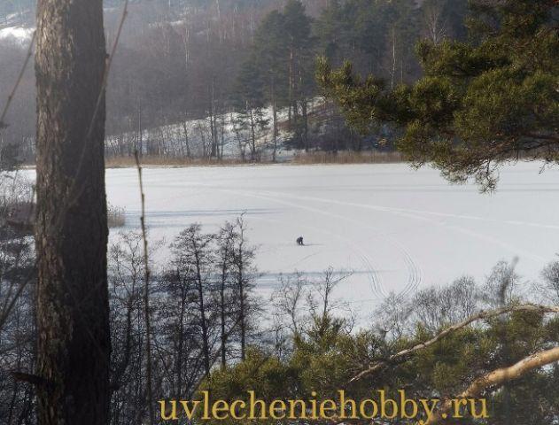 uvlecheniehobby.ru.природа25
