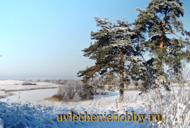 uvlecheniehobby.ru.природа6