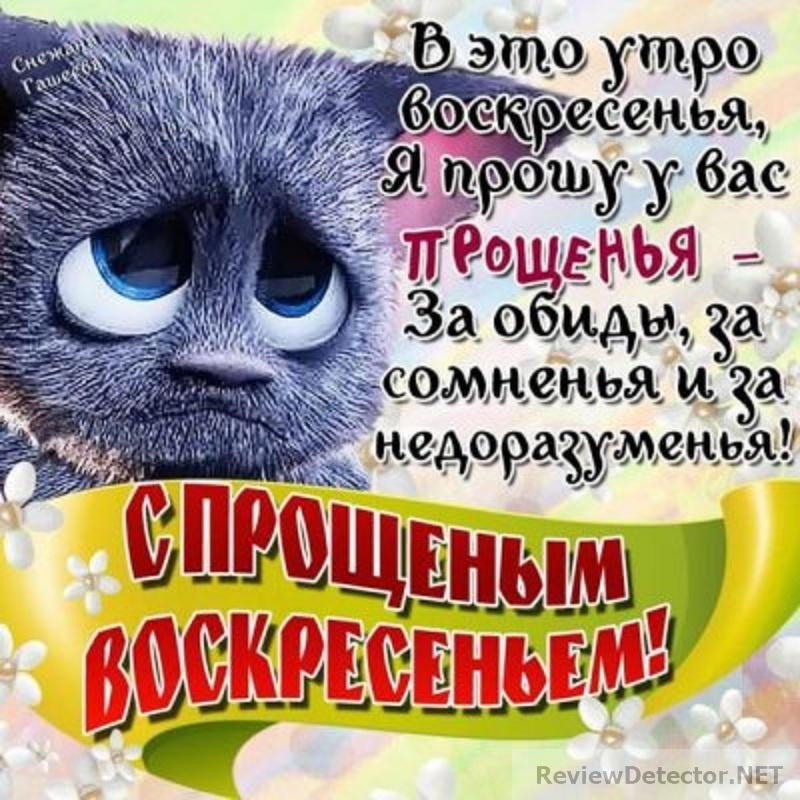1487969015_voskr-5.jpg