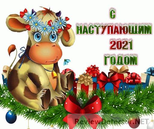 IMG-20201231-WA0010.jpg